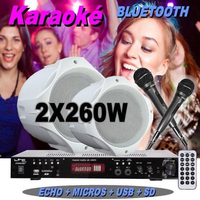 Ibiza Sound White pack karaoké avec 2 micros - 1 ampli - 2 enceintes hifi - pa-dj