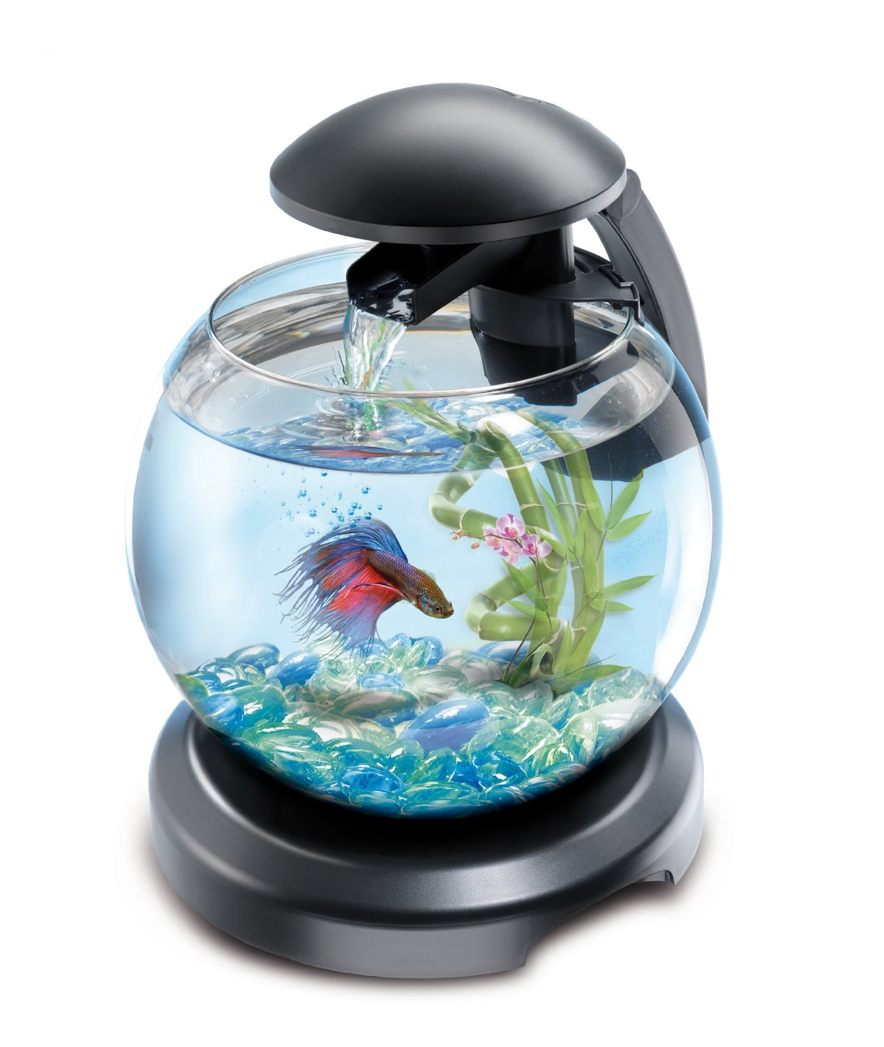 tetra cascade globe aquarium design quip de 6 8 l pour poissons d 39 eau froide zolux pas. Black Bedroom Furniture Sets. Home Design Ideas