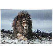Declikdeco - Laissez entrer le Roi de la jungle dans votre salon : le Tableau En Verre Kare Design Impression Lion 120x80cm Simba trônera royalement sur votre mur. Ce tableau en verre donnera une touche ethnique et naturelle à votre pièce. Caractéristiques :- Matière
