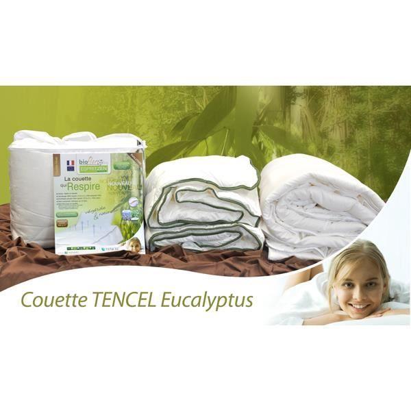 espritzen pack couette bioflor t 200x200 250g 2 oreillers bioflor 65x6cm5 700g 200cm x. Black Bedroom Furniture Sets. Home Design Ideas