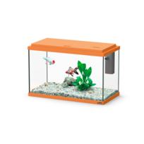 Vente aquarium poisson rouge for Aquarium poisson rouge occasion