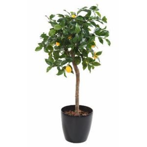 Artificielflower arbre artificiel fruitier citronnier t te en pot int rieur cm vert - Arbre fruitier en pot ...