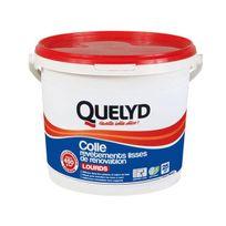 Quelyd - Colle de Revêtements lisses lourds 6Kg - 30601521