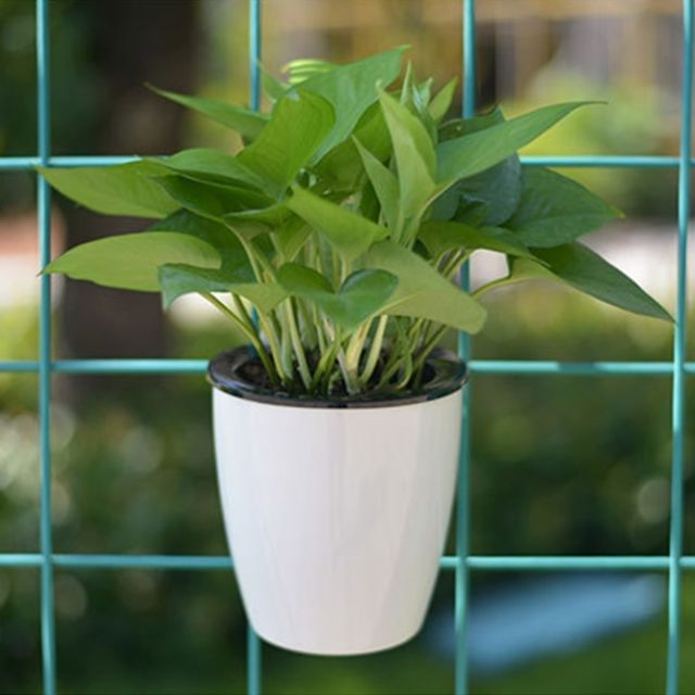 Wewoo Pot de fleur vert Pots de fleurs paresseux automatiques pilules de viande de radis absorbant l'eau hydroponique de en pl