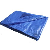 Titanium - Bache 400X500 Bleu