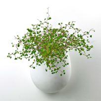 Serax - Vase en céramique à suspendre 16x13xH.21cm Liam