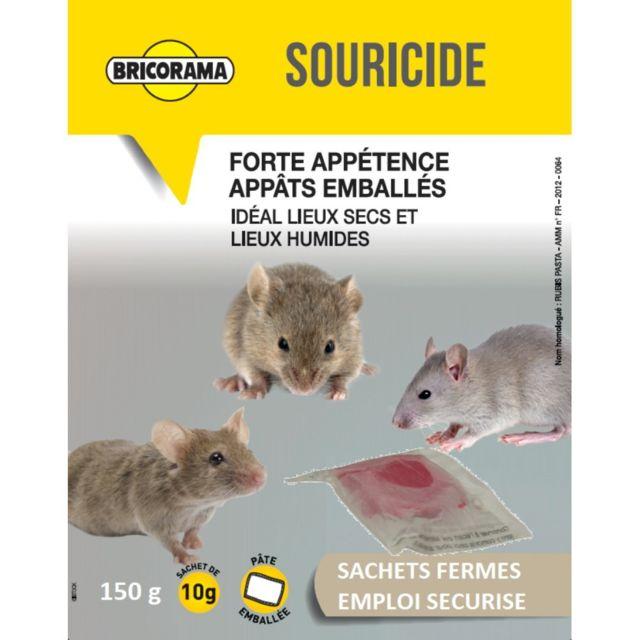Bricorama Raticide souricide pâtes 150g