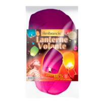 Lanterne Volante Multicolore