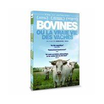 Arcades - Bovines ou la vraie vie des vaches