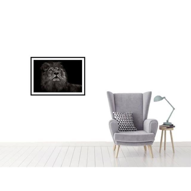CADRE PHOTO KING Affiche encadrée 60x40cm - Lion noir & blanc