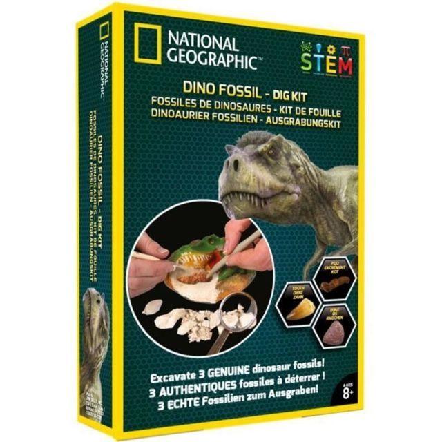 DECOUVERTE NATURE - DECOUVERTE ANIMAUX - DECOUVERTE INSECTES NATIONAL GEOGRAPHIC - Kit de fouille - 3 fossiles de dinosa