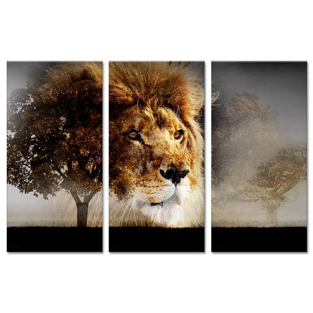 declina - tableau contemporain photo sur toile lion sauvage - cadre