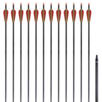 """Vidaxl - 12 flèches standard en carbone 30"""" 0,76 cm pour arc classique"""