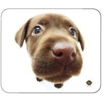 Allsop - Tapis De Souris Chocolate Labrador X6