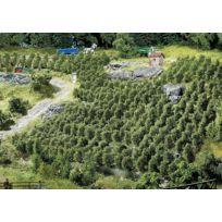 Faller - Modélisme : Végétation : 36 pieds de vigne