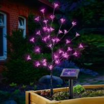 Sunny Trend - Cerisier led solaire rose