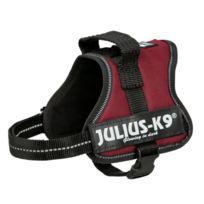 Julius K9 - Julius-k9 Harnais Power Mini/M- 51?67cm bordeaux pour chien