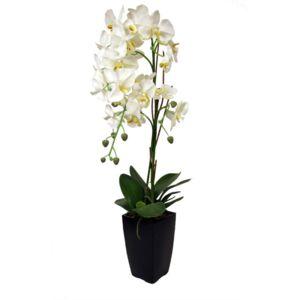 ligne deco orchid e blanche en pot noir pas cher achat vente petite d co d 39 exterieur. Black Bedroom Furniture Sets. Home Design Ideas