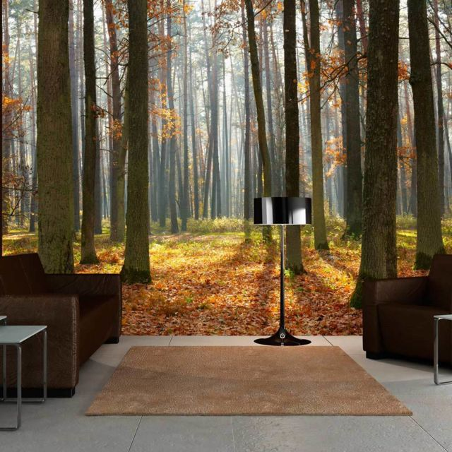 Artgeist Papier Peint Autumn Trees 200x154 Paysages Arbres