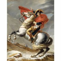 Dtoys - Puzzle 1000 pièces : David : Bonaparte franchissant le Grand-Saint-Bernard