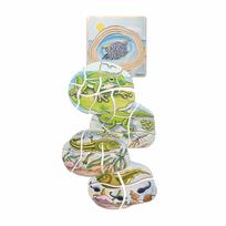Beleduc - Puzzle de grenouille 17053