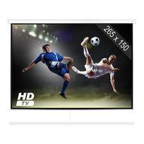 FRONTSTAGE - SLS-120 Ecran de projection pour Home cinéma toile 265 x 150 cm