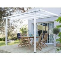 Idea Nature - Tonelle adossée en aluminium et polycarbonate 3x3,11m Tradition