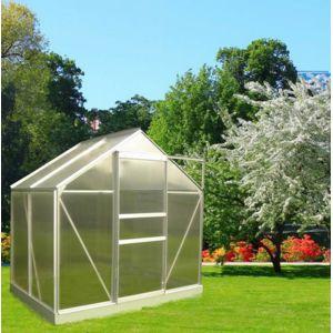 Jardin express serre de jardin 46 polycarbonate for Serre de jardin carrefour