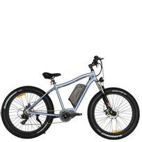 Weebot - Vélo électrique Vtt - Le Cross Gris Gris