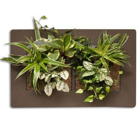 cadre vegetal mural acheter tableau v g tal cadre v g tal pas cher cadre cadre v g tal mural. Black Bedroom Furniture Sets. Home Design Ideas