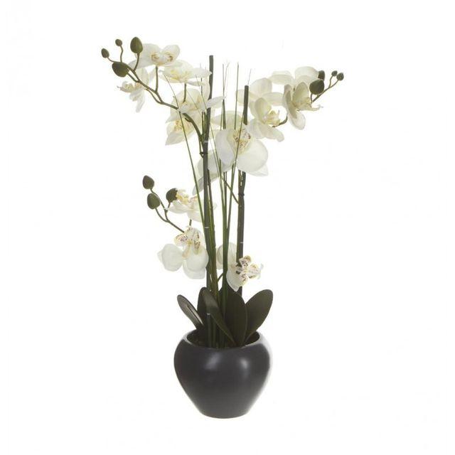 Composition Florale Orchidée & Vase Céramique 53cm Gris