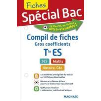 Magnard - Fiches Special Bac ; Compil De Fiches Gros Coefficients ; Terminale Es ; Ses, Maths, Histoire-Géo