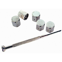Altium - 5 Bouchons de valve antivol