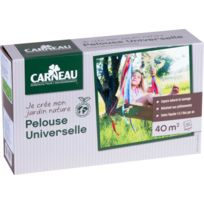 CARNEAU - Pelouse universelle 1kg