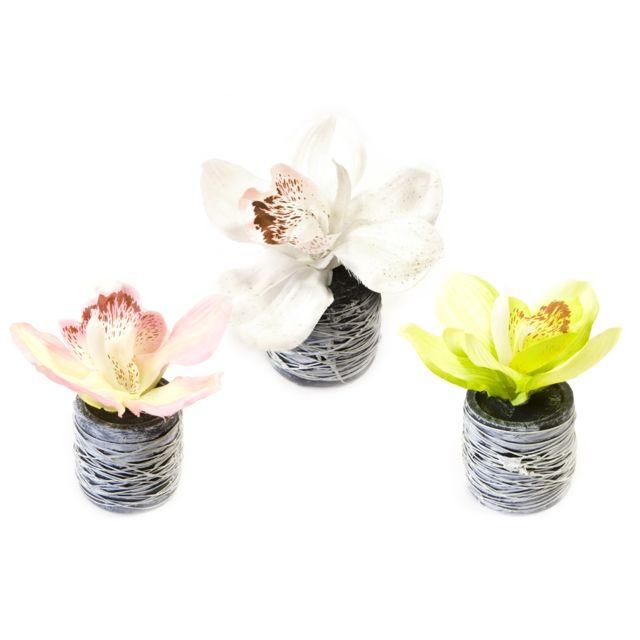 Visiodirect 12 Orchidées en pot 3 coloris assortis - 11 x 7 cm