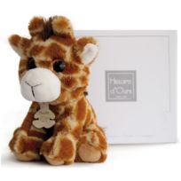 Histoire D'OURS - Peluche de la savane : Doudou girafe