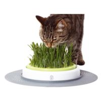 Cat'it - Jardin d'herbe Senses Design CatIt