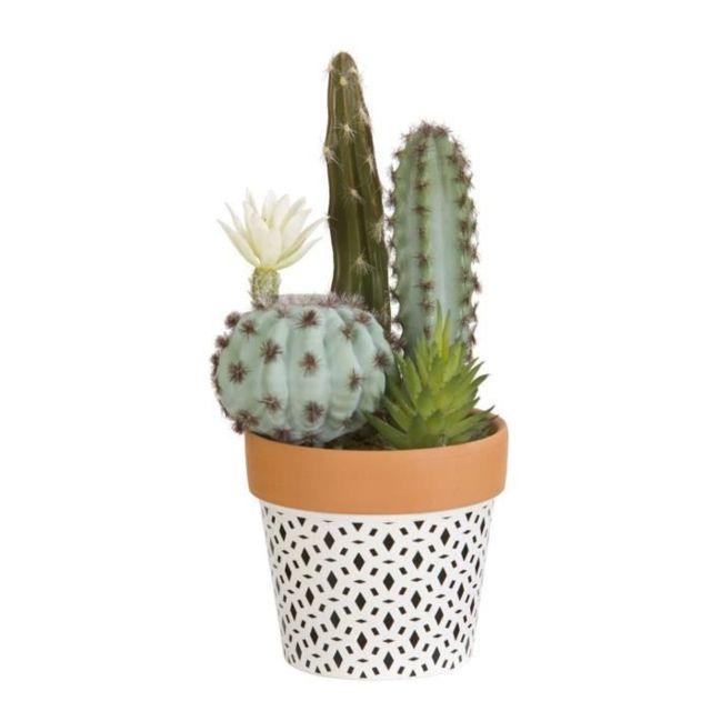 FLEUR-PLANTE ARTIFICIELLE - FLEUR SECHEE Composition de Cactus fleuri et plantes grasses - En pot ethnique noir