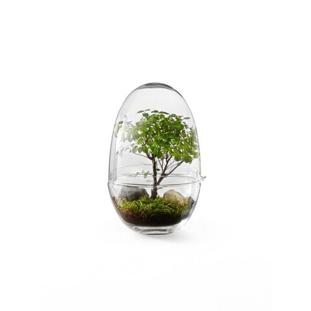 Design House Stockholm Mini-serre Grow - Xl