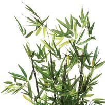 plante bambou exterieur achat plante bambou exterieur pas cher soldes rueducommerce. Black Bedroom Furniture Sets. Home Design Ideas