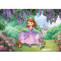 Papier Peint Princesse Achat Papier Peint Princesse Pas Cher Rue