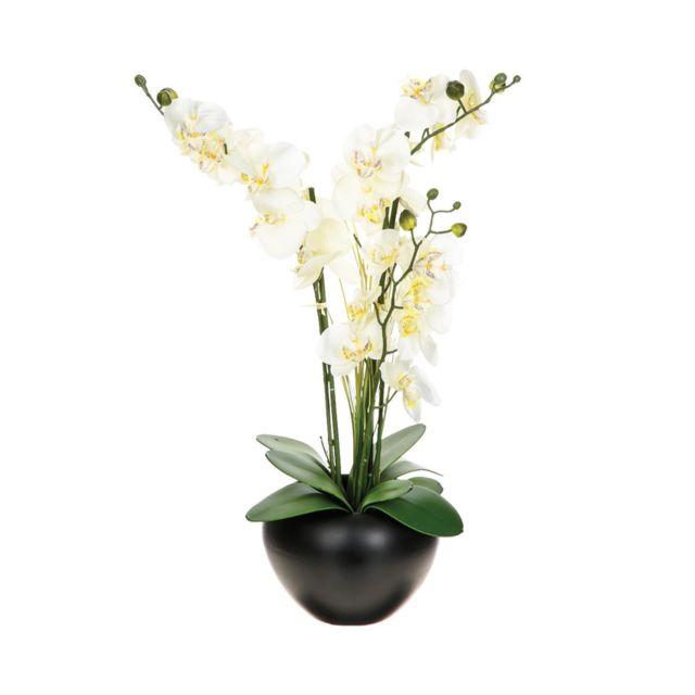 Atmosphera, Createur D'INTERIE Atmosphera - Composition orchidée vase céramique H63