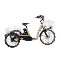 Cyclo2 - Tricycle électrique Comfort 24