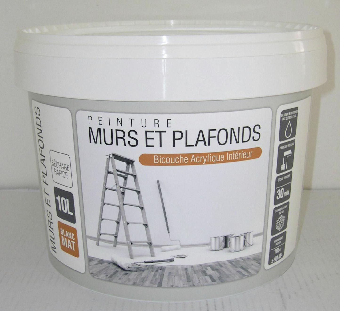 Rue du commerce peinture bicouche acrylique mat 10 l for Peinture mur et plafond pas cher