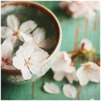Pots Fleurs Accrocher Au Mur Achat Pots Fleurs Accrocher Au Mur