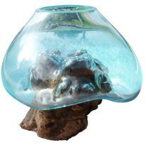 Les animaux de la fee aquarium boule pour combattant sur for Achat poisson combattant