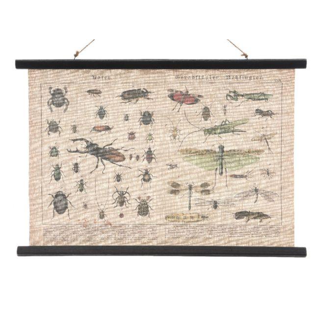 Decoris - Tableau en toile à suspendre effet vintage insecte 80x55cm Marcel