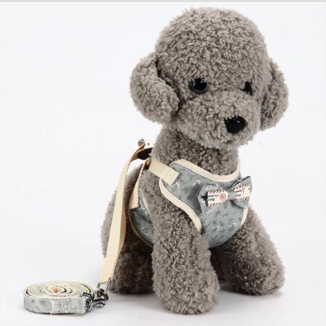 Wewoo Laisse pour chien universel animaux de compagnie dans le doscorde de tractioncordechaînelaissetaille M Gris