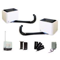 EXTEL - Kit de motorisation de portail à bras articulés Bora