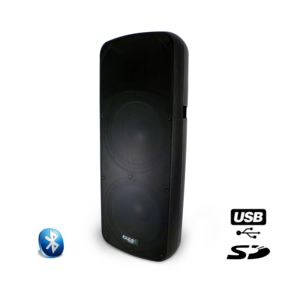 ibiza sound enceinte amplifi e 800 w usb sd bluetooth. Black Bedroom Furniture Sets. Home Design Ideas